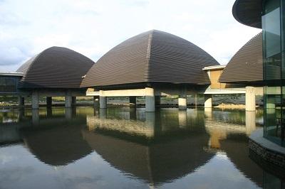「田中一村美術館」の画像検索結果